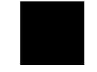 Lutrra icon
